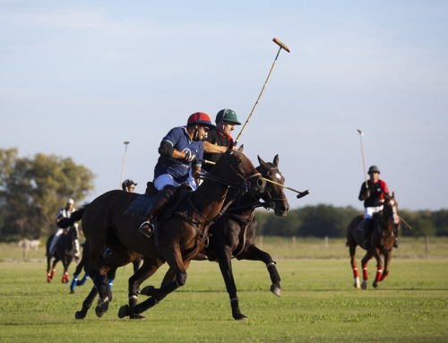 Argentina-3 Argentine polo players