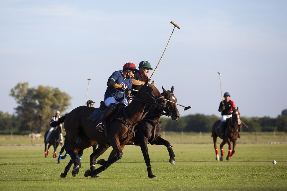 Argentine polo players