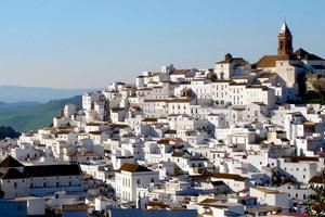 Andalucia white villages polo tour