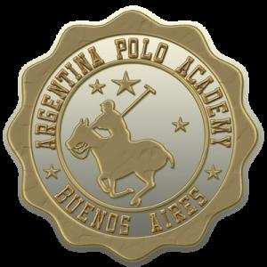 bronce-polo-pin