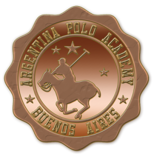 Bronce-Polo-Pin-Academy