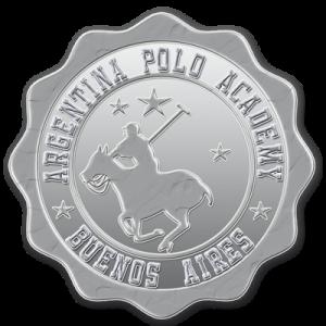 gold-polo-pin